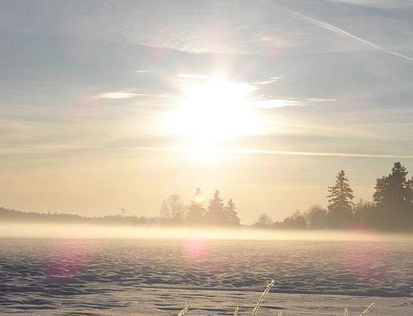 Winter Season Misty Hazy Winter Dream Foggy Unclea