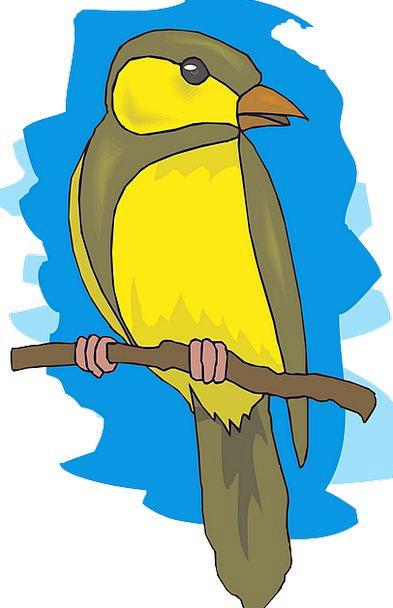 Goldfinch Fowl Yellow Creamy Bird Free Vector Grap