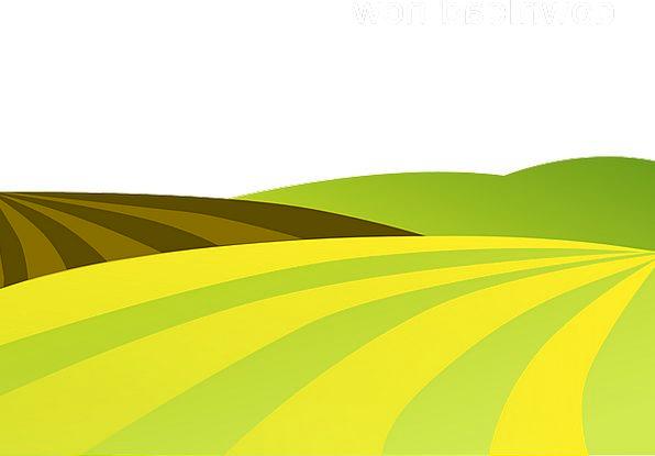 Landscape Scenery Landscapes Farming Nature Hills