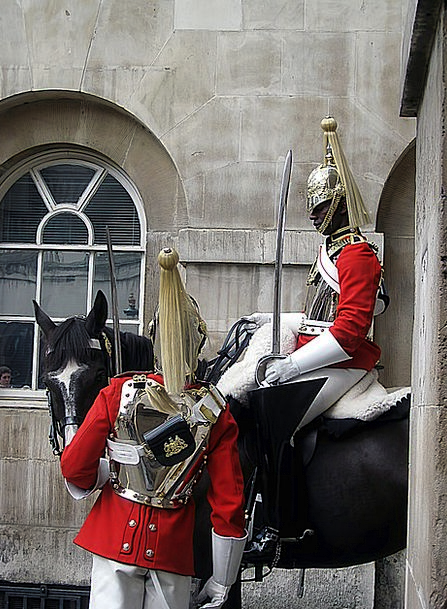 Horse Mount Protectors London Guards English