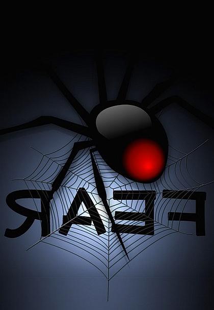 Cobweb Net Spider Network Fear Terror Creepy Arach