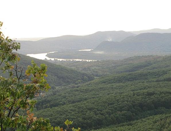 Forest Woodland Landscapes Stream Nature Danube Ri
