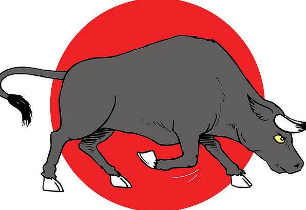 Charge Custody Decree Horns Sirens Bull Animal Phy