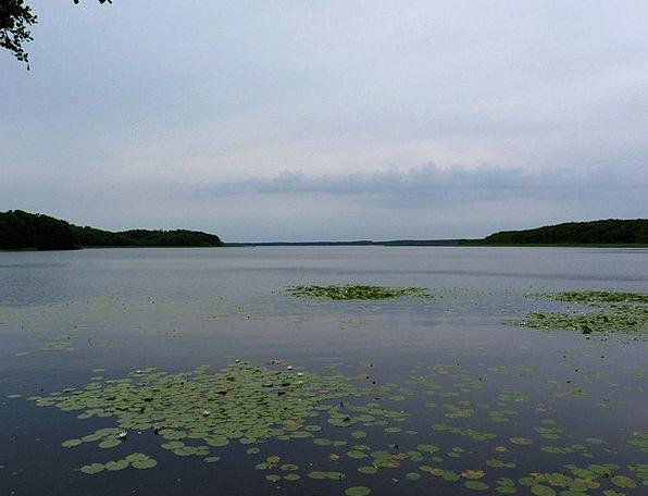 Mecklenburg Landscapes Nature Nature Countryside M