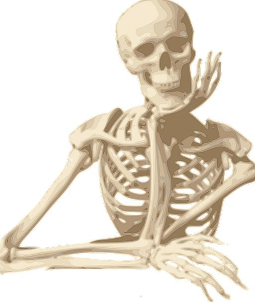 Skeleton Minimum Amused Sitting Sedentary Smiling