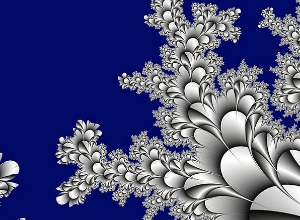 Fractal Textures Backgrounds Flora Vegetation Appl