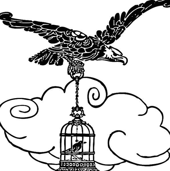 Eagle Fowl Flying Hovering Bird Carrying Loud Cage