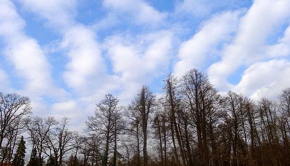 Cloud Mist Landscapes Vapors Nature Blue Azure Clo