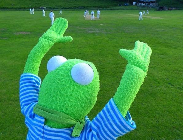 Kermit Cheerfulness Fan Admirer Cheer Ball Look Fo