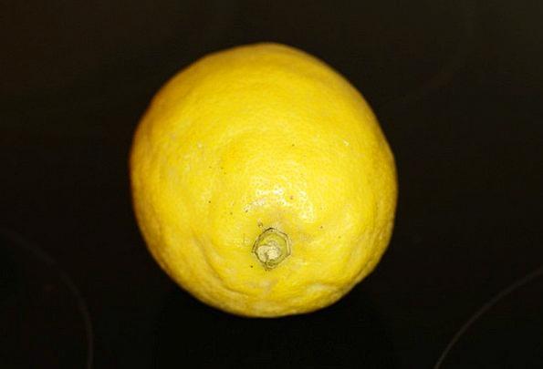 Lemon Dud Drink Food Citrus Fruit Citrus Fruit Ova