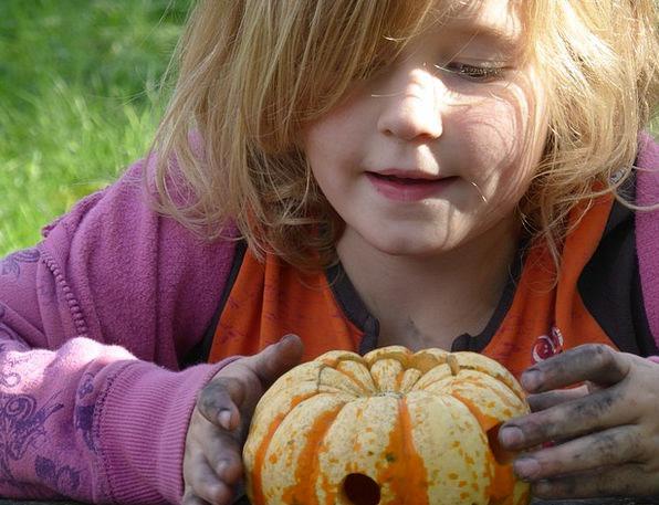 Girl Lassie Production Pumpkin Play Children Brood