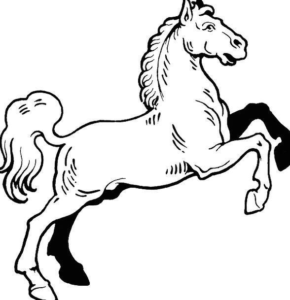 Horse Mount Snowy Rampant Lush White Hoof Rearing