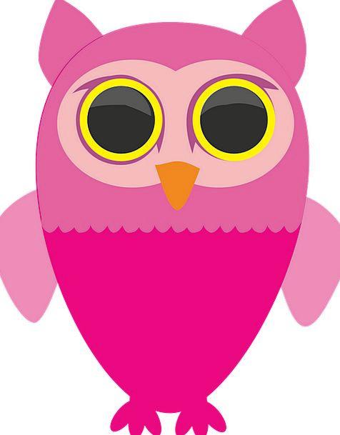 Sowa Bird Fowl Owls A Fairy Tale Wild Rough Animal