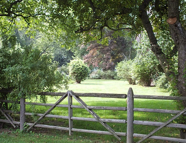 Fence Barrier Landscapes Nature Farm Farmhouse Spl