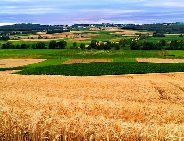 Burgenland Landscapes Arenas Nature Nature Country