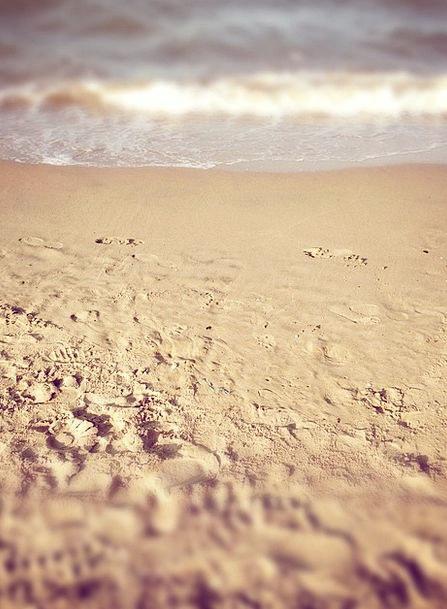 Beach Seashore Vacation Travel Footprints Paths Th