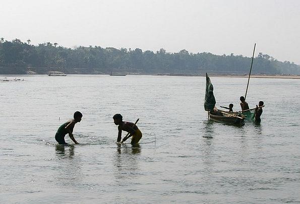 Fishing Angling Stream Water Aquatic River Angler