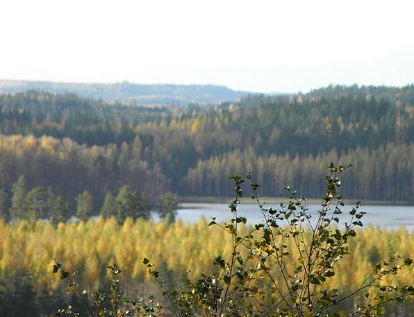 Autumn Fall Landscapes Nature Saimaa Archipelago S