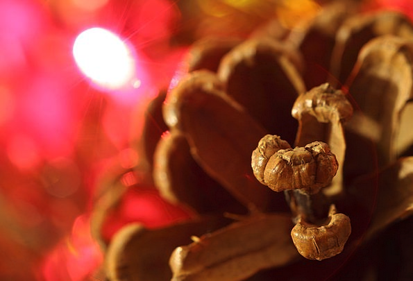 Christmas Pinecone Decoration Beautification Cone