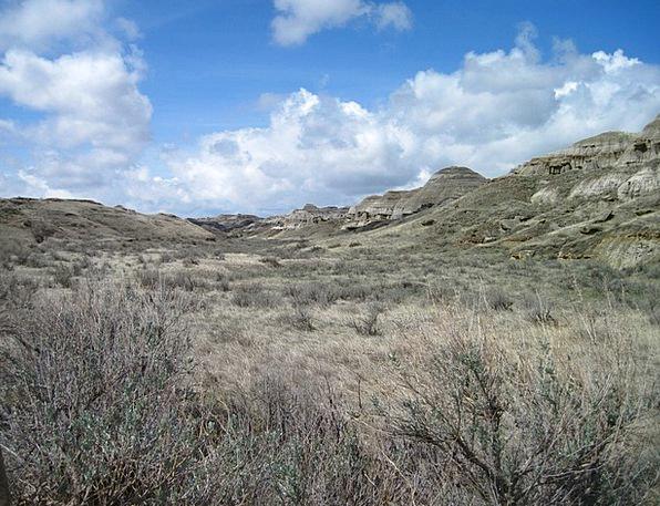 Dinosaur Provincial Park Landscapes Prairieland Na