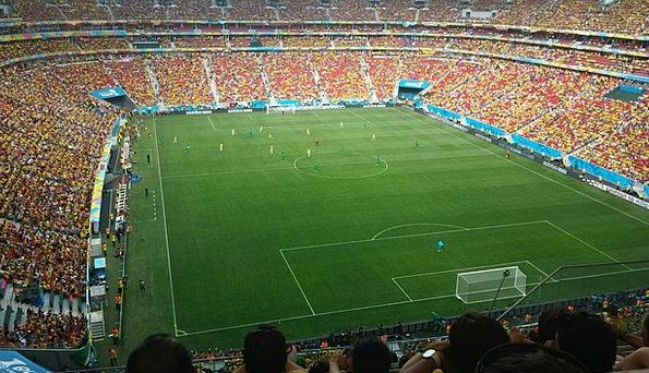 Stadium Arena Ball Field Football Departure Lawn G