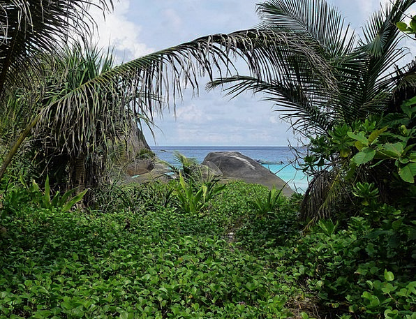Thailand Landscapes Isle Nature Rock Pillar Island