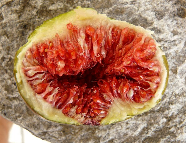 Fig Drink Ovary Food Eat Bother Fruit Food Nourish