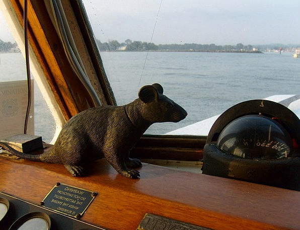 Rat Swine Boat Ship Fake Compass Scope Mascot Wate