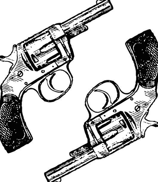 Guns Weapons Pistol Two Binary Revolver Weapon Arm