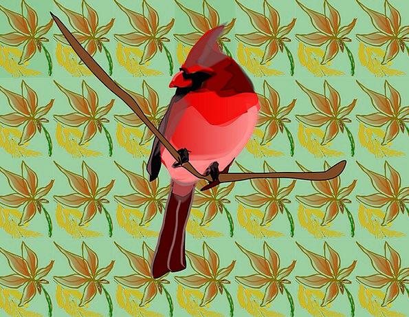 Singing Bird Fowl Oscine Bird Bird Songbird Free V