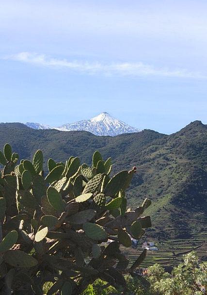 Tenerife Landscapes Nature Teide Pico De Teide Gre