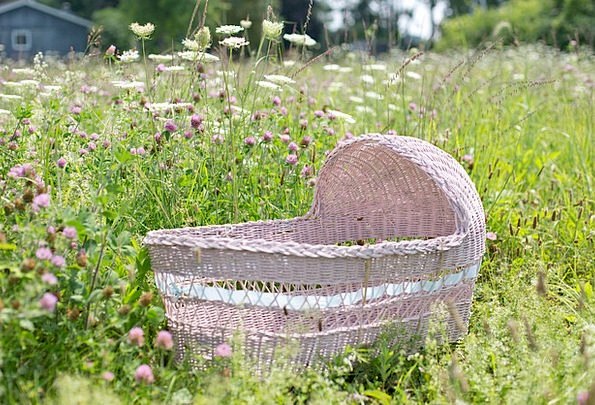 Baby Bassinet Pink Flushed Bassinet Wildflowers We