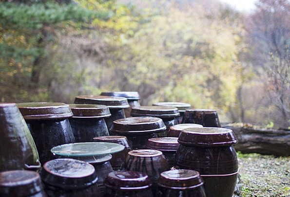 Jar Pot Fall Storage Storing Autumn Autumn Leaves
