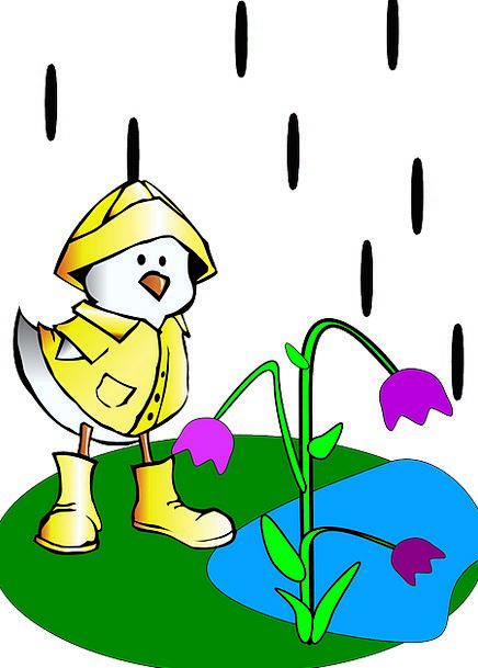 Raining Wet Out-of-doors Duck Stoop Outdoors Costu