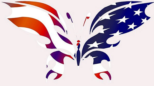 Butterfly Flag Standard Usa Insect Bug Silhouette