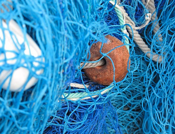Fishing Net Net Fishing Angling Network