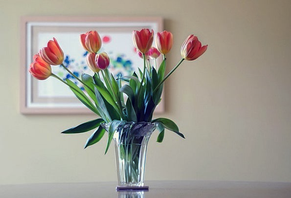 Flower Vase Plants Bouquet Flowers Vase Urn Table