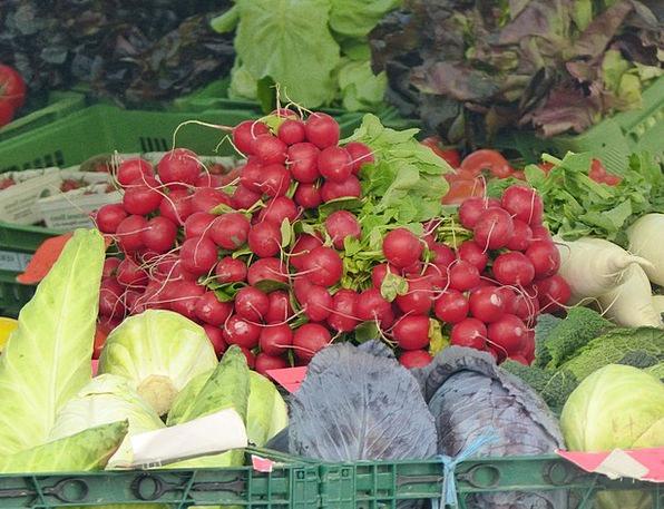 Market Marketplace Potatoes Garden Plot Vegetables