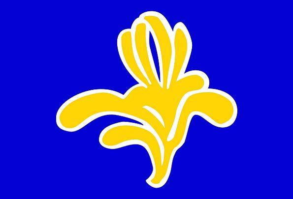 Brussels Standard Capital Wealth Flag Region Area