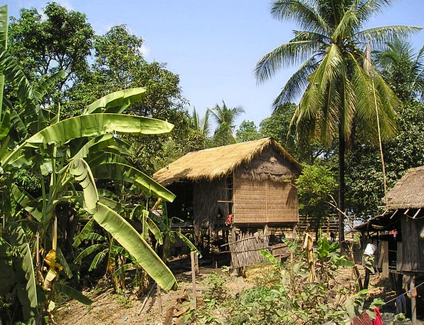 Cambodia Shed Palm Trees Hut Local Native Live Sou