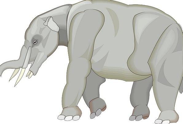 Gray Leaden Monster Animal Physical Elephant Ancie