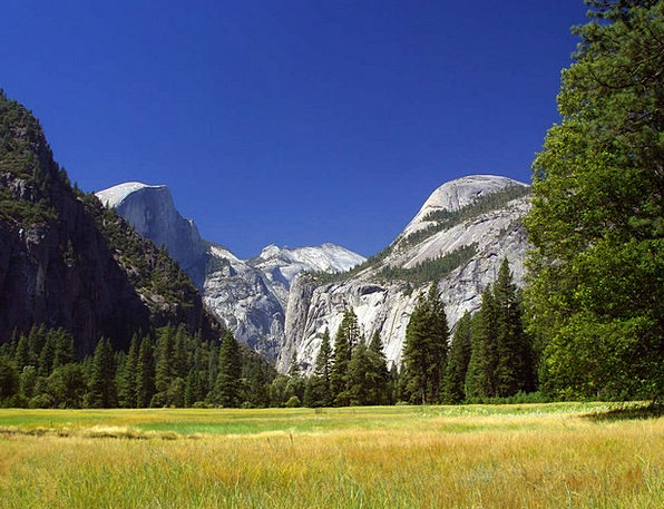 Yosemite Landscapes Stated Nature Valley Vale Repo