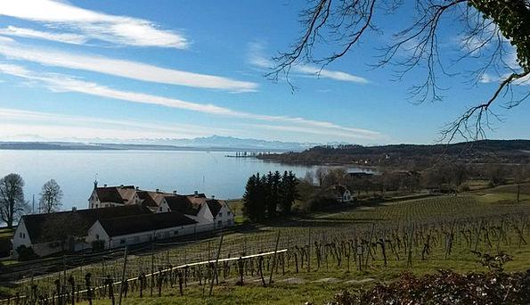 Lake Constance Uhldingen Mühlhofen Birnau Water Aq