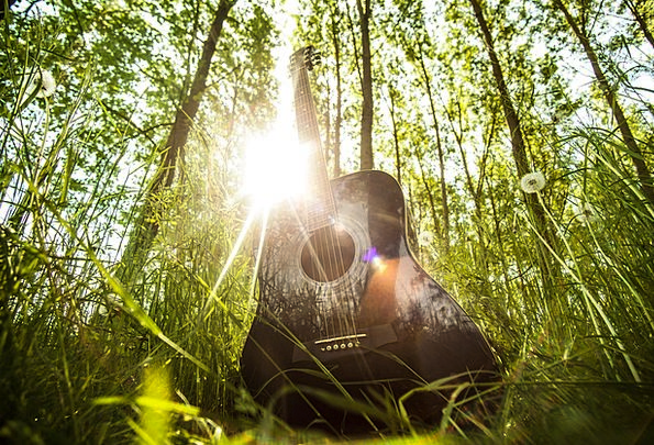 Acoustic Guitar Guitar Musical Instrument Music Melody Trees