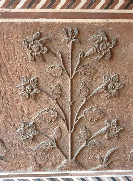 India Buildings Architecture Flower Floret Sunflow