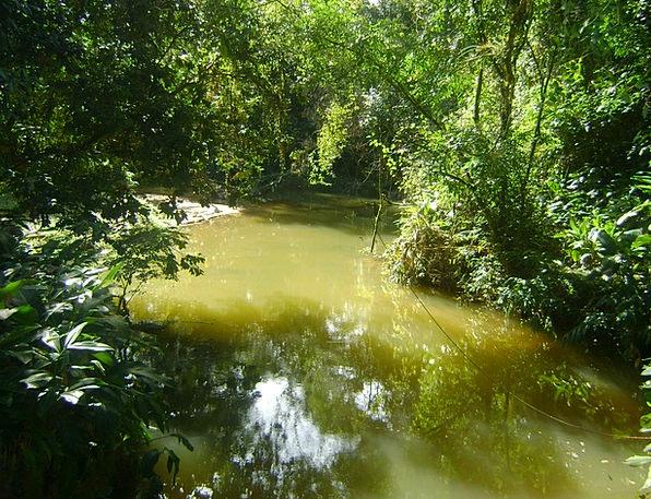 Stream Watercourse Water Aquatic Ribeiro Mountain
