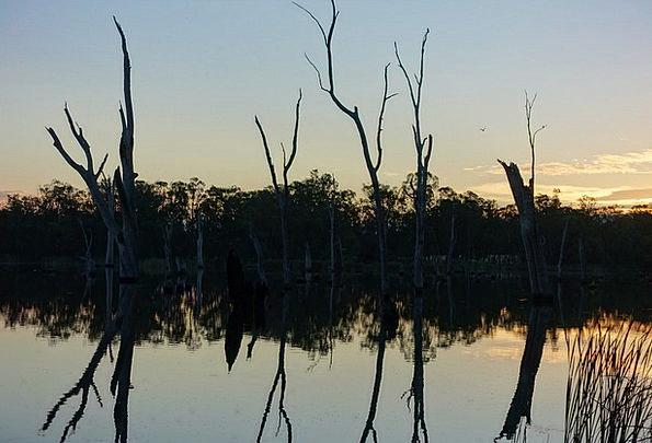 Water Aquatic Landscapes Likeness Nature Peaceful