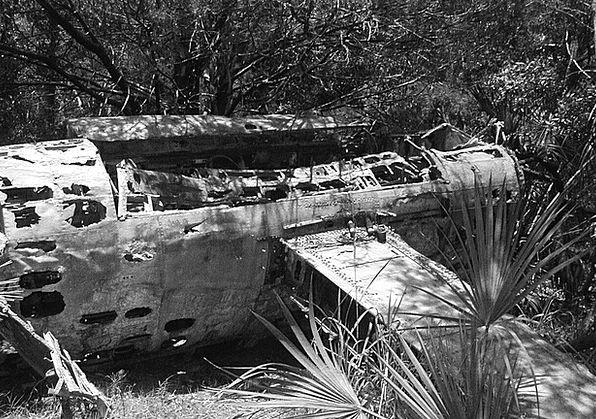 Plane Flat Woods Forests Jet Bomber Island Old Riv
