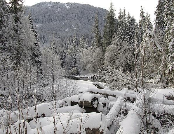 Snowscape Landscapes Season Nature Winter Creek Wi
