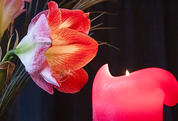 Candle Taper Landscapes Arrival Nature Candlelight